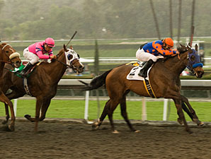Five Oaks Fillies to Meet Again in Acorn