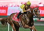 Curlin Back to Work after Dubai Trip