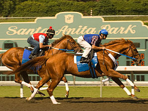 Asmussen Rules Out Curlin for Clark