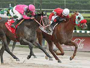 Florida Stallion Sweep Bids Denied at Calder
