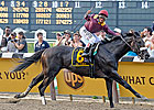 Top 10 Bloodhorse.com Stories of 2008