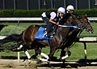 Daddy Nose Best Drills Sharp 5f at Churchill