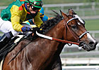 Dancing in Silks Looking for a Comeback at SA