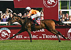Danedream Springs Huge Upset in Arc
