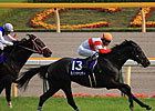 Danon Chantilly Sets Mark in Japan's Mile Cup