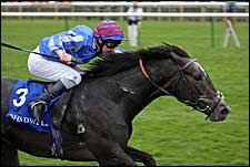 Dark Angel Soars to Win Middle Park