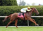 Dayatthespa Can Keep It Going in Matriarch