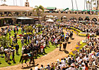 Del Mar's Paddock Sale to be Held July 20