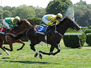 Demonstrative Skirts Trouble in Turf Writers