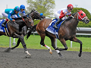 Derby Kitten Pulls Lexington Upset