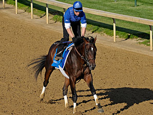 Godolphin's Desert Party on Track for Derby