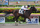Devil's Cave Goes Long in Millions Distaff
