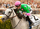Discreet Marq to be Offered at F-T November