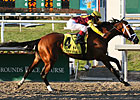 Baker's Dozen Entered in Louisiana Derby