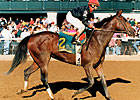 Kentucky Oaks Winner Dispute Dies at Age 23