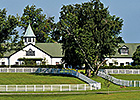 Dixiana to Sponsor Two Keeneland Stakes