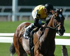 Prioress Brings Together Appealing Zophie, Dream Rush