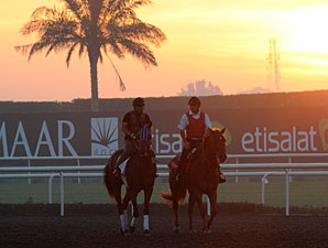 Post Times and Entries for Dubai World Cup