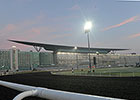 Probable Fields Released for Dubai World Cup