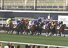 Dubai World Cup: Dubai Gold Cup
