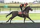 Dubai World Cup: March 26 Morning Training II
