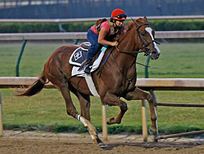 Dullahan Breezes at Churchill Downs