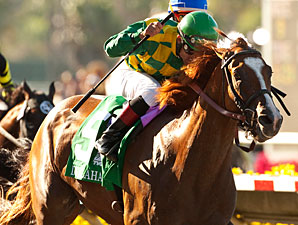 Dullahan Uses Jamaica as Breeders' Cup Prep