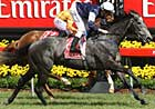 New Zealand-Bred Efficient Takes Melbourne Cup