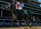 Jockey Club, NTRA Act on Derby Death
