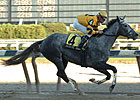 Elusive Lady Faces Seven in Florida Oaks