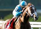 Breeders' Cup Focus: English Channel - Turf