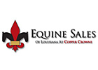 Equine Sales Co. Posts Record Louisiana Gross
