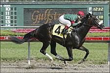 Zito: Eurosilver Will Miss Toyota Blue Grass Stakes