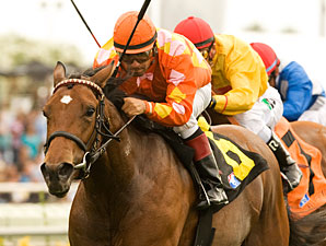 Star 3YO Fillies Square Off in QE II