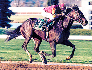 Event of the Year Had Turfway Inspired in '98