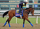 Executiveprivilege Has Baffert's Confidence