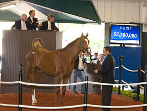 Average Grows 9.3% at F-T Juvenile Sale
