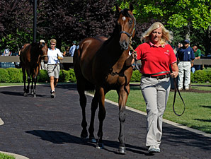 Economy Squeezes F-T July Yearling Sale
