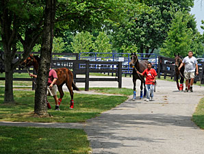 F-T Day One: Yearlings to Watch