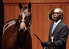Fasig-Tipton October Sale a Record-Breaker