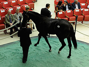 Gross Rises 45.6% at Saratoga Sale