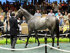 Medaglia d'Oro Filly Brings $1.575M at F-T