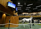 Fasig-Tipton Saratoga Sale Day 1 Wrap