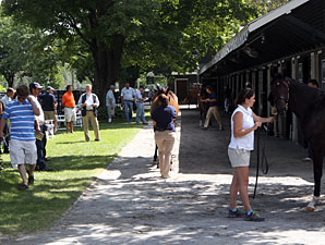 U.S. Buyers Could Step Up at Saratoga Sale