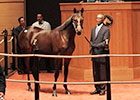 Fasig Tipton October Sale 2013 Wrap-Up
