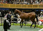 Fasig-Tipton Saratoga Sale Day 2 Wrap