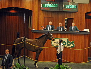 OBS Sale Posts Record Average