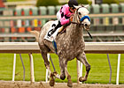 Gomez On Flashback in Santa Anita Derby