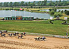 Fort Erie to Race in 2014, Horsemen Say