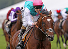 Frankel Facing Up to Seven in QIPCO Sussex